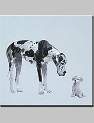 baratos -grande mão pintado pintura a óleo da lona modernas cães abstratos imagens de animais, com quadro esticado pronto para pendurar