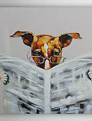 Hand Painted Oil Painting Animal Hyperopia Dog in Reading Newspaper with Stretched Frame