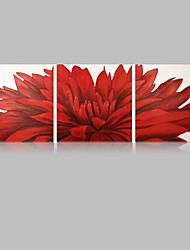 cheap -IARTS Floral Paintings Wall Art Red Color Stretchered Ready to Hang Size  40*40*3pcs cm (16''X16''*3) inch