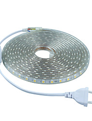 cheap -5m AC220V SMD 5050 light+Power plug,white/warm white/green/blue/red,60leds/m 300led waterproof  led Strips