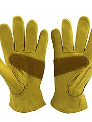 gato Handschuhe Lederhandfläche Rind Handschuhe hart rutschfeste Handschuhe Arbeit
