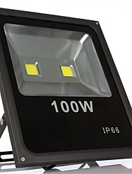 100W Warm Cool White IP66 Waterproof LED Flood Light led lamp(85-265V)