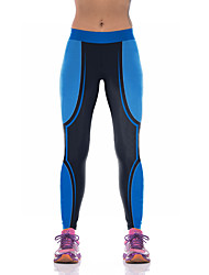billige -Dame Patchwork Yoga bukser - Rose Rød, Blå Sport Bukser Løb, Fitness, Træningscenter Sportstøj Åndbart, Komprimering Elastisk