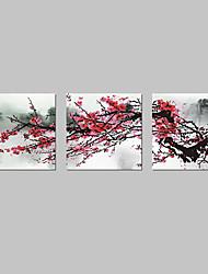abordables -Reproducción en lienzo de Arte Floral Bloom Juego de 3