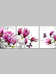cheap -Prints Poster Purple Pink Blue Flower Art  Home Decorative  Pictures Print On Canvas  3pcs/set (Without Frame)