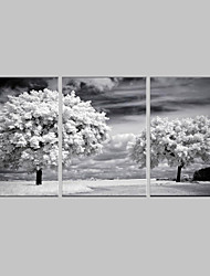 cheap -Landscape Botanical Three Panels Vertical Print Wall Decor Home Decoration