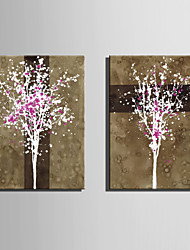 E-HOME® Stretched Canvas Art White Tree Flower Decoration Painting  Set of 2