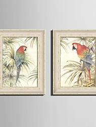 baratos -Quadros Emoldurados Conjunto Emoldurado Animais Arte de Parede, PVC Material com frame Decoração para casa Arte Emoldurada Sala de Estar