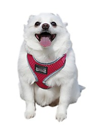 cheap -Funtional Reflecting Mesh Pets Safety Belt Harness for Pets Dogs