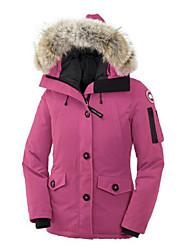 Standard Piumino Da donna,Cappotto Semplice Casual Tinta unita Poliestere Piumino in piuma d'oca bianca Manica lungaBlu / Rosa / Rosso /