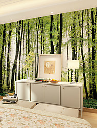 cheap -JAMMORY 3D Wallpaper For Home Contemporary Wall Covering Canvas Material Forest TreesXL XXL XXXL
