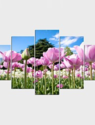 Stretched Canvas Print Landscape Floral/Botanical Classic Pastoral,Five Panels Canvas Any Shape Print Wall Decor For Home Decoration