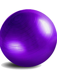 55cm Fitness Ball/Yoga Ball Yoga Gym PVC