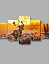 Lager HD Print Deer Animal Oil Painting On Canvas Wall Art For Living Room Home Decor (No Frame)