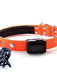 Dog Collar LED Lights Adjustable / Retractable Solid TPU Orange Yellow Red Pink