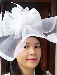 cheap -Feather Net Fascinators Hats Birdcage Veils Headpiece