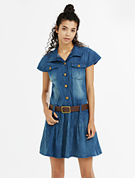 Women's Plus Size Blue Denim Dress
