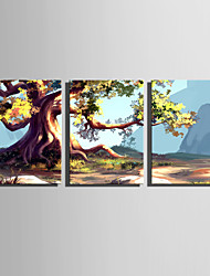 cheap -E-HOME Stretched Canvas Art  Ancient Trees Decoration Painting Set Of 3