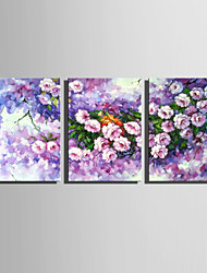 E-HOME Stretched Canvas Art  Purple Flowers Decoration Painting Set Of 3