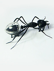 Solar Powered Toys Toys Animals Insect Ant Solar-Powered DIY Girls Boys 1 Pieces