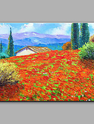cheap -Large Size Hand-Painted Landscape The Wild Little Red Flowers  Canvas Oil Painting For Home Decoration No Framed