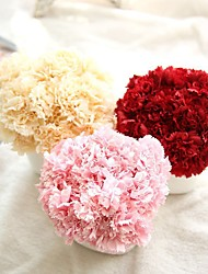 cheap -Carnation Bouquet Holding Flowers Home Decoration Wedding Flowers Mother's Day Simulation