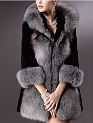 Women's Casual/Daily Simple Winter Fur Coat,Solid Hooded Long Sleeve Long Others