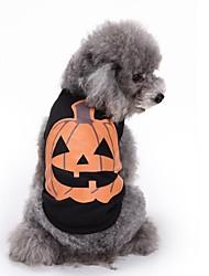 Недорогие -Кошка Собака Толстовка Рождество Одежда для собак Для вечеринки На каждый день Хэллоуин Рождество Тыква Черный Костюм Для домашних