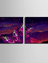 cheap -E-HOME® Stretched LED Canvas Print Art Flashing Butterfly LED Flashing Optical Fiber Print Set of 2
