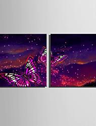 E-HOME® Stretched LED Canvas Print Art Flashing Butterfly LED Flashing Optical Fiber Print Set of 2