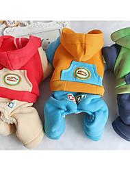 Cane Tuta Abbigliamento per cani Casual Lettere & Numeri Arancione Rosso Verde