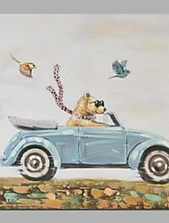 Dipinta a mano Animali Da cerimonia Artistico Classico Un Pannello Tela Hang-Dipinto ad olio For Decorazioni per la casa
