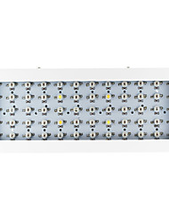 cheap -1pc 200-300 lm Growing Light Fixtures 60 leds High Power LED Warm White UV (Blacklight) Blue Red AC 85-265V