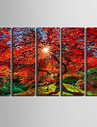Недорогие -5 панелей Холст Вертикальная С картинкой Декор стены For Украшение дома