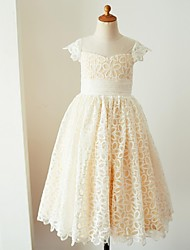 cheap -Ball Gown Knee Length Flower Girl Dress - Lace Short Sleeves Jewel Neck with Sash / Ribbon by LAN TING BRIDE®