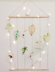 Photo Rack And Battery String Light  Including 12Pcs Wooden Photo Clips 2 Pegs And 6Leaf Postcard