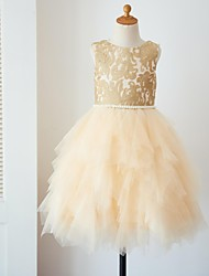 cheap -Ball Gown Knee Length Flower Girl Dress - Lace Tulle Sleeveless Scoop Neck with Pearl Detailing by LAN TING BRIDE®