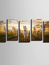 cheap -Stretched Canvas Print Canvas Set Landscape Five Panels Vertical Print Wall Decor Home Decoration