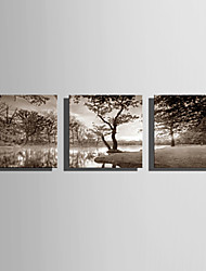 cheap -Stretched Canvas Art Landscape Bank of the Lake Set of 3