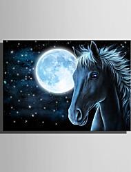 economico -Animali / Paesaggio Print Canvas Un pannello Pronto da appendere , Verticale