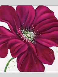 Недорогие -Ручная роспись Цветочные мотивы/ботанический Квадратный, Modern холст Hang-роспись маслом Украшение дома 1 панель