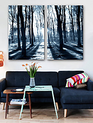 cheap -Canvas Print Modern, Two Panels Canvas Vertical Print Wall Decor Home Decoration