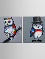 Недорогие -Hang-роспись маслом Ручная роспись - Животные Современный Modern холст