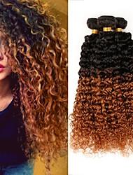 cheap -Brazilian Hair Kinky Curly Virgin Human Hair Ombre Hair Weaves Human Hair Weaves Black / Medium Auburn