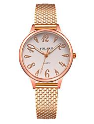 Недорогие -Жен. Кварцевый Модные часы Китайский Повседневные часы Plastic Группа минималист Цветной Черный Белый Синий Красный Зеленый Золотистый