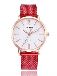 baratos -Mulheres Quartzo Relógio de Moda Chinês Relógio Casual Plastic Banda Minimalista Colorido Preta Branco Azul Vermelho Verde Rosa Amarelo