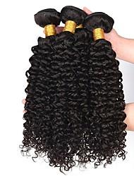 Недорогие -4 Связки Малазийские волосы Кудрявый Натуральные волосы Накладки из натуральных волос Ткет человеческих волос Удлинитель / Горячая распродажа Естественный цвет Расширения человеческих волос Все
