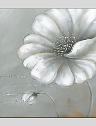 abordables -Pintura al óleo pintada a colgar Pintada a mano - Floral/Botánico Modern
