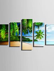 Недорогие -С картинкой Отпечатки на холсте - Пляж Пейзаж Modern