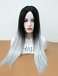 Недорогие -Парики из искусственных волос Прямой Средняя часть Искусственные волосы Жаропрочная / Волосы с окрашиванием омбре Серый Парик Жен. Длинные
